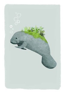 Katherine Blower, Manatee (United Kingdom, Europe)