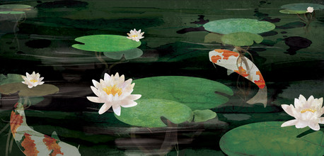 Koi Pond - fotokunst von Katherine Blower