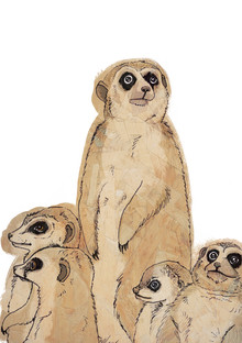 Katherine Blower, Meerkat Family (United Kingdom, Europe)