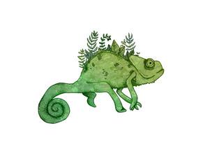 Chameleon - fotokunst von Katherine Blower