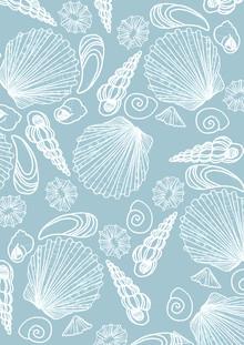 Katherine Blower, Blue Sea Shell Pattern (Großbritannien, Europa)