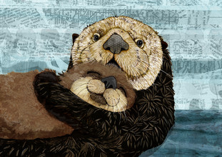 Katherine Blower, Sea Otter Family (Großbritannien, Europa)