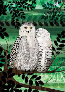 Snowy Owls - fotokunst von Katherine Blower