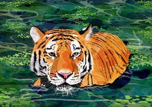Katherine Blower, Tiger (Großbritannien, Europa)