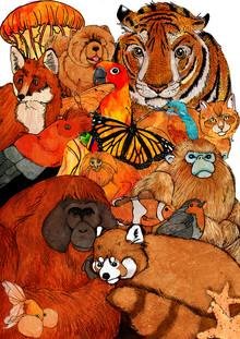 Katherine Blower, Orange Animals (Großbritannien, Europa)