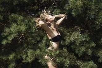 Northern Comfort - fotokunst von Linas Vaitonis