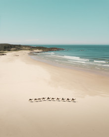 Fin Matson, Remember Nature (Australia, Oceania)