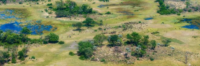 Dennis Wehrmann, Luftaufnahme Okavango Delta in Botswana (Botswana, Afrika)