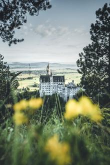 Philipp Steiger, Neuschwanstein Castle (Germany, Europe)