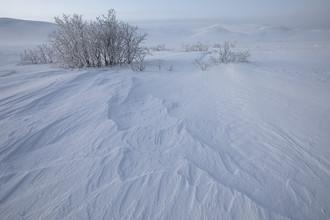 Dirk Heckmann, Winterliche Strukturen (Norwegen, Europa)