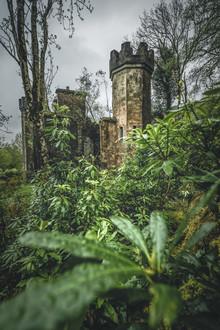 Philipp Steiger, Sleeping Beauty (Irland, Europa)