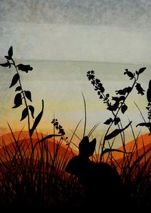 Katherine Blower, Evening sky (, )