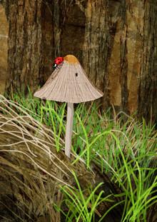 Mushroom - fotokunst von Katherine Blower