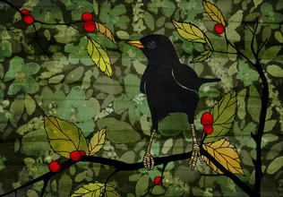 Katherine Blower, Blackbird (United Kingdom, Europe)
