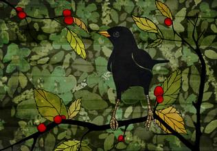Blackbird - fotokunst von Katherine Blower