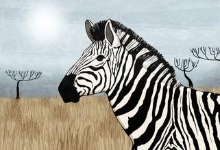 Katherine Blower, Zebra (Großbritannien, Europa)
