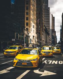 Dimitri Luft, Taxi Squad (United States, North America)