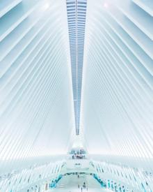 Dimitri Luft, Oculus NYC (United States, North America)