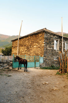 Franziska Söhner, Horse, Georgia (2017) (Georgien, Asien)