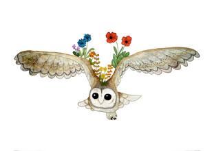 Katherine Blower, Barn Owl Spirit Guide (United Kingdom, Europe)