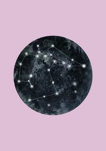 Julia Hariri, Constellation Pink (, )