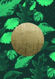 Julia Hariri, Gold Moon Green (, )