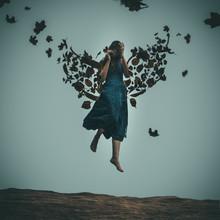 Rova Fineart - Simone Betz, Autumn wings (Germany, Europe)