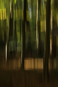 autumn abstract #1o - fotokunst von Steffi Louis