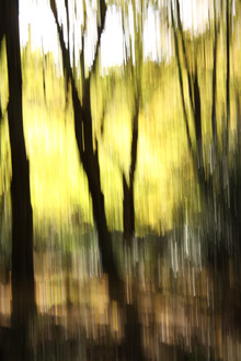 autumn abstract #07 - fotokunst von Steffi Louis