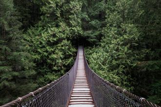 Manuel Gros, The Forest is calling // Lynn Canyon, Canada (Canada, North America)