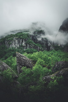 Lukas Litt, Grünes Paradies (Norwegen, Europa)