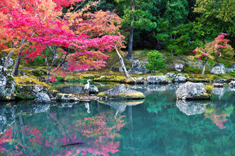 Victoria Knobloch, The beauty of Japan (Japan, Asia)