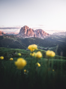 Roman Huber, Alpenglühen in Gröden (Italien, Europa)