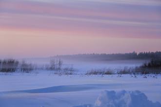 Winter wonderland - fotokunst von Oona Kallanmaa