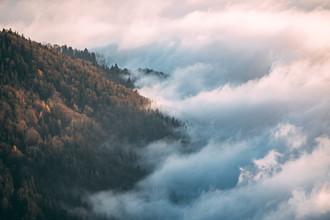 Sebastian 'zeppaio' Scheichl, Trees vs clouds (Austria, Europe)