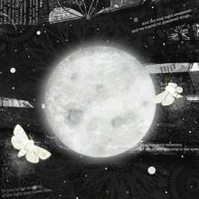 Katherine Blower, Moths On The Moon (Großbritannien, Europa)