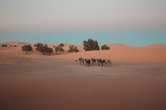 Thomas Christian Keller, Sahara Desert (Marokko, Afrika)