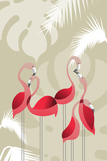 Sabrina Ziegenhorn, Flamingoes in love (Germany, Europe)