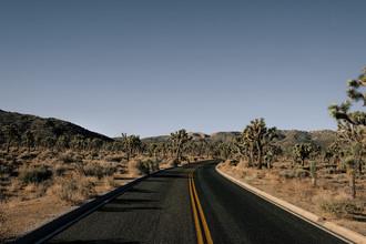 Sebastian Trägner, Desert Road (Vereinigte Staaten, Nordamerika)