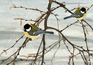 Katherine Blower, Pair of Great Tit Birds (United Kingdom, Europe)