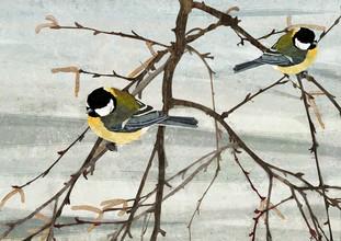 Katherine Blower, Pair of Great Tit Birds (Großbritannien, Europa)