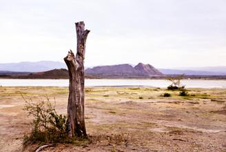 Victoria Knobloch, Lake Elementaita (Kenya, Africa)