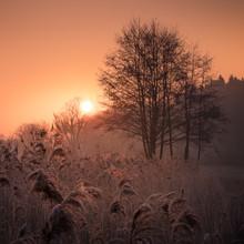 Anke Butawitsch, first light (Deutschland, Europa)