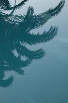 Studio Na.hili, Palms in the Pool (Frankreich, Europa)