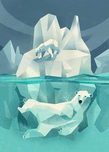 Dieter Braun, Polar Bears (Germany, Europe)