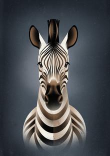 Dieter Braun, Zebra (Germany, Europe)