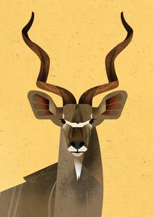 Dieter Braun, Greater Kudu (Germany, Europe)