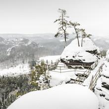 Island of pines - Sächsische Schweiz - Fineart photography by Ronny Behnert