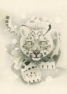 Dieter Braun, Snow Leopard (Germany, Europe)
