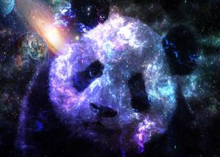 Lemo Boy, Galaxy Baby Panda Planet (Egypt, Africa)